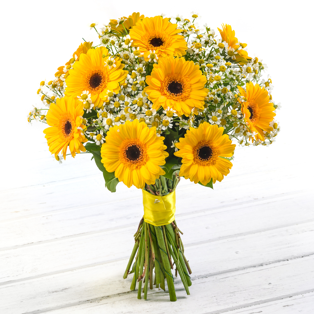Sunshine<br>Ингредиенты: Гербера мини 12 шт, Танацетум  11 шт, Салал;