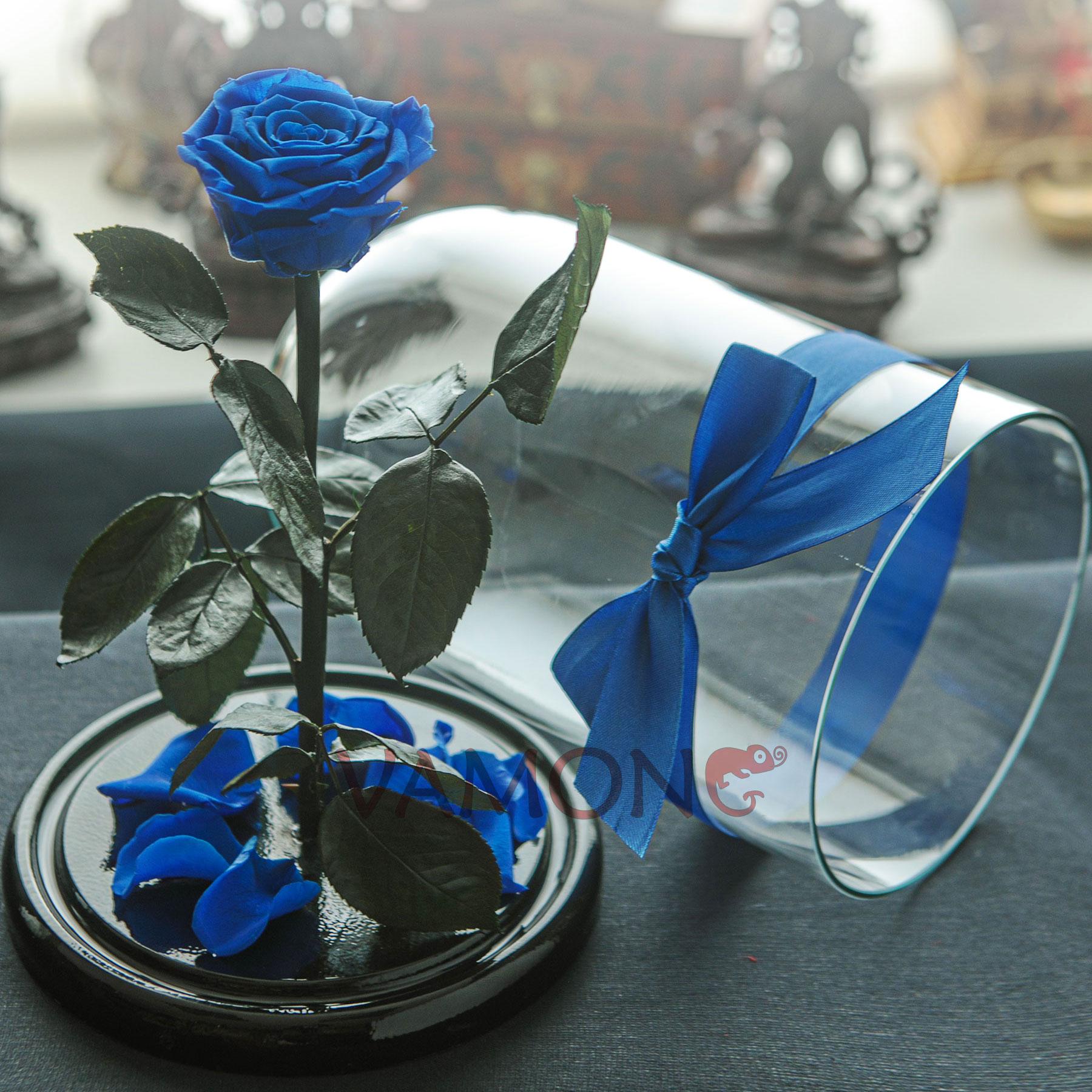 Роза в колбе синего цвета<br>